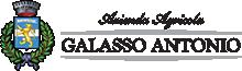 Azienda Agricola Galasso – Tuscan wine Logo